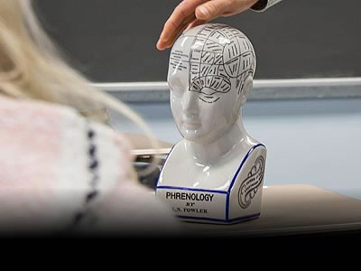model of the human head and brain